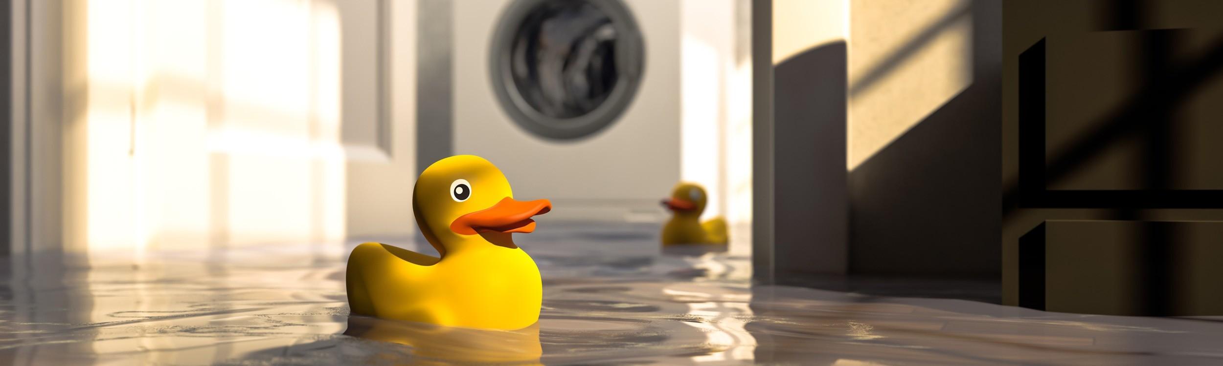 Apollo Flood Insurance