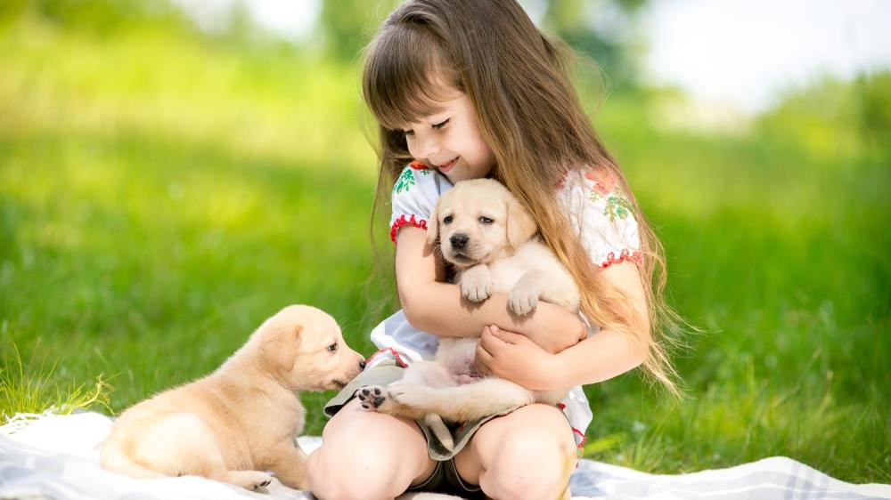 girl with 2 puppies