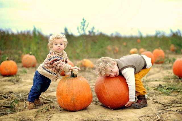 kids playing with pumpkins